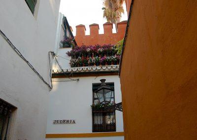 Visita guiada barrio santacruz
