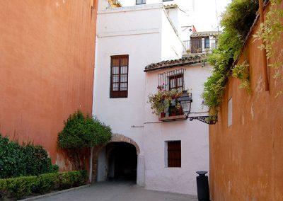 Visita privada Sevilla