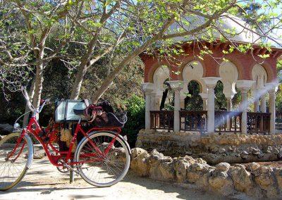 Visita Sevilla en bicicleta